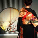 Kimono_backshot_by_sth